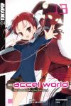 Accel World (Novel) 13: Der Startschuss in der Brandung