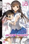 Accel World (Novel) 18: Der schwarze Kämpfer mit den zwei Schwertern