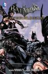 Batman: Arkham City Band 5