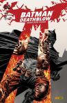 Batman/Deathblow: Nach dem Feuer