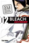 Bleach extreme Band 2