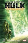 Bruce Banner: Hulk 2: Die andere Seite