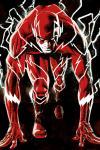 Flash: Das erste Jahr Hardcover