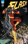 Flash (Rebirth) 10: Eiskaltes Bündnis