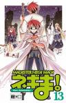 Magister Negi Magi Band 13