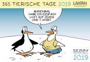 Sebby Tageskalender 2019 - 365 tierische Tage