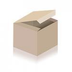 Tintin (Tim und Struppi) Kalender 2020